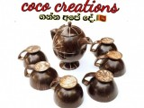 coconut shell coco creation