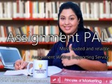 Assignment Dissertation Essay Support